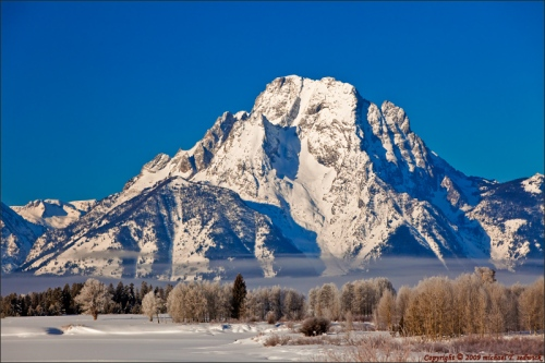 Mount Moran and Morning Frost